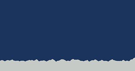 Dibrina Logo Main